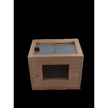 Colmeia mini - pacotes madeira de abelhas